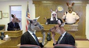 kangaroo-court-2x