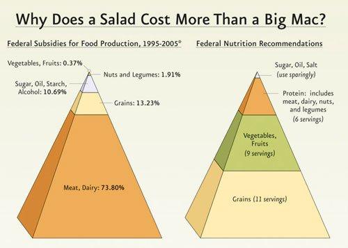 ag-subsidy-pyramid